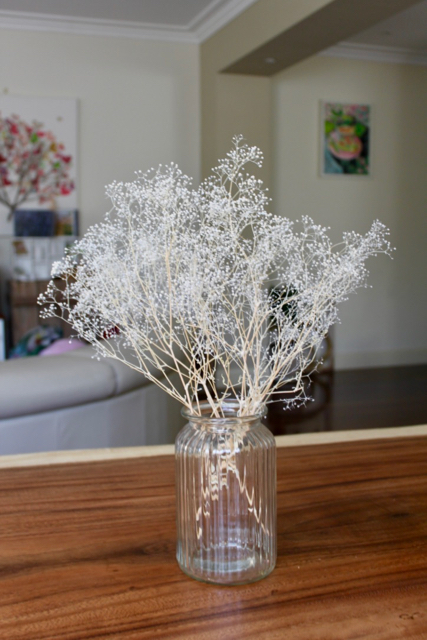 Image of Preserved Baby Breath - Small White